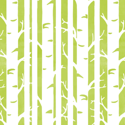 Birches in Lime