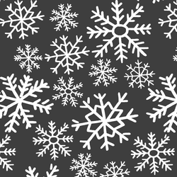 Dashing Through the Snow in Onyx
