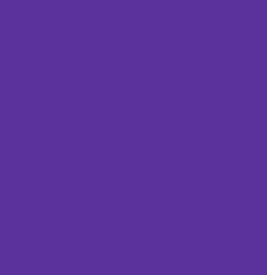 Free Spirit Designer Solid in Deep Violet