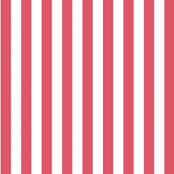 Candy Stripe in Passion