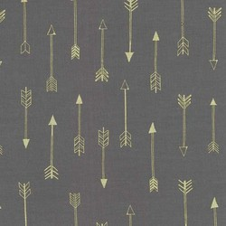 Arrows in Coin Metallic