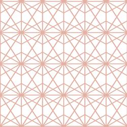 Terrarium in Quartz on White