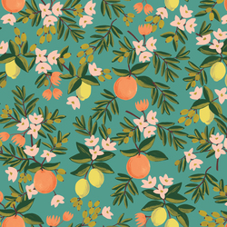 Citrus Floral in Teal