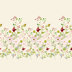 Rose Glory Border in Cream