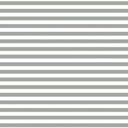 Horizontal Dress Stripe in Sage
