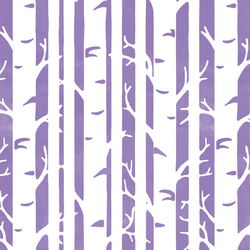 Birches in Amethyst