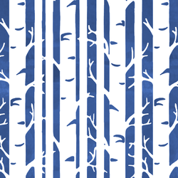 Birches in Blue Jay