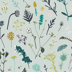 Plantae in Aurora