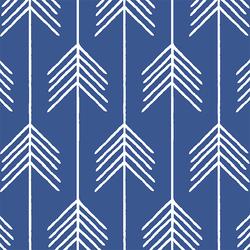 Vanes in Blue Jay