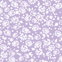 Daisies in Lilac