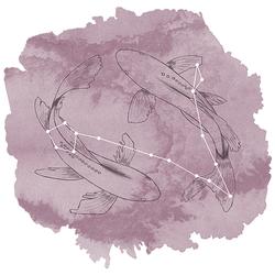 Pisces Panel in Celestial