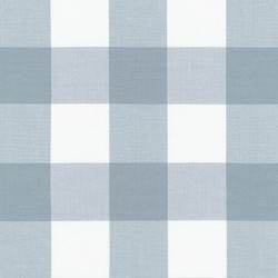 Two Inch Carolina Gingham Yarn Dyed in Platinum