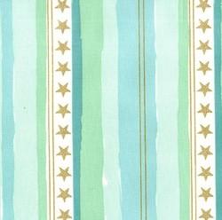 Stars and Stripes Flannel in Aqua