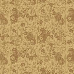 Briar Bunnies in Golden Canyon