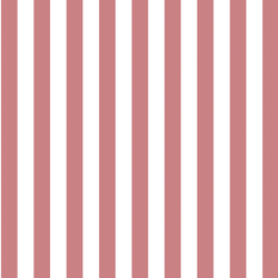 Candy Stripe in Berry