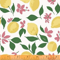 Lemons in White