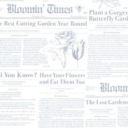 Bloomin Times in Mist