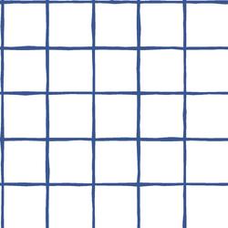 Windowpane in Blue Jay on White