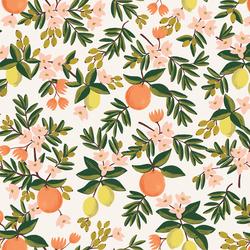 Citrus Floral in Cream