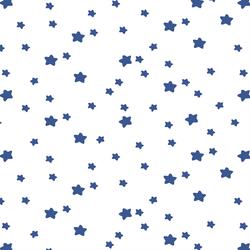 Star Light in Blue Jay on White