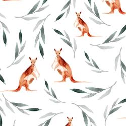 Big Kangaroos in White