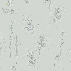 Meadow in Field