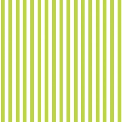 Dress Stripe in Lime