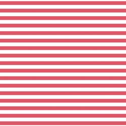 Horizontal Dress Stripe in Passion