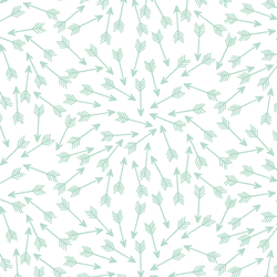 Arrows in Mint on White