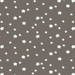Star Light in Stone
