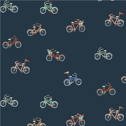 Bicycles in Midnight