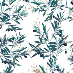 Olive Foliage in Mediterraneo