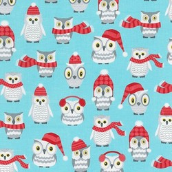 Owl Friends in Aqua