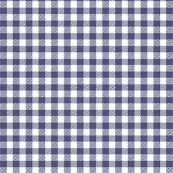 Small Buffalo Plaid in Indigo