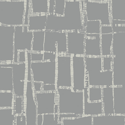 Maze in Fog