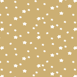 Star Light in Golden Canyon