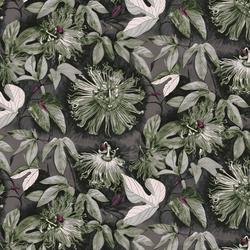 Passiflora in Glimmer