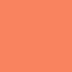 Solid in Light Orange