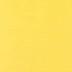 Dana Cotton Modal Knit in Yellow
