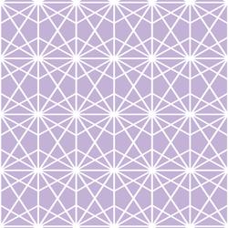 Terrarium in Lilac