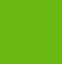 Free Spirit Designer Solid in Bright Green