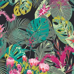 Tropicalia in Dark