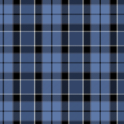 Plaid in Blue