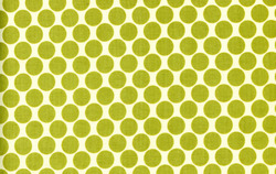Full Moon Polka Dot in Lime