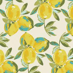 Yuma Lemons in Mist