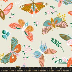 Flutter in Shell