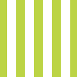 Play Stripe in Lime