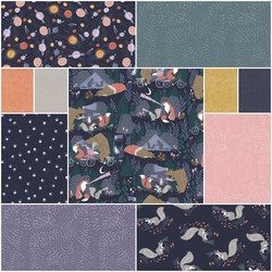 Night Ride Fat Quarter Bundle