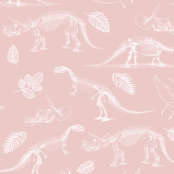 Fossils in Blush