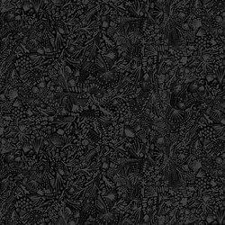 Plants in Black